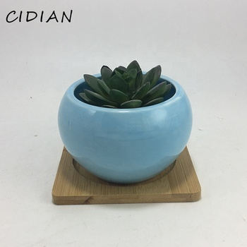 Ceramic succulent flower planter pot with bamboo tray