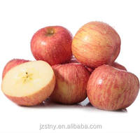 Top red wholesale apple
