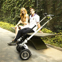 CHIC-LS Micro best kick scooter,fast delivery best e bicycle scooter