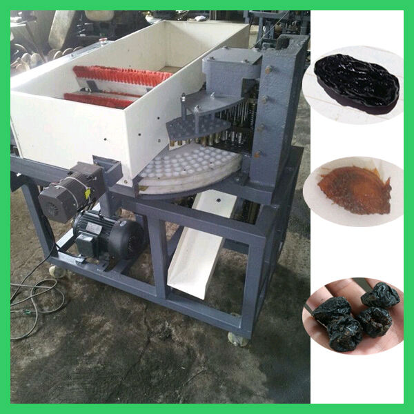 Popular Plum seed separator machine/seed removing machine for sale