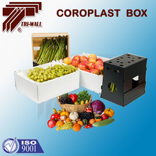 Corrugated PP Plastic Packing Box Case for fruits