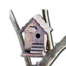 New Design Tree/Wall Mounted Cedar Bird House With Platform