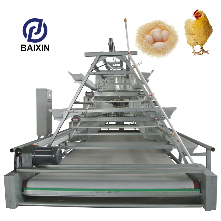 Poultry Farm House A Type Layer Galvanized Welded Wire Mesh Egg Chicken Cage