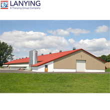 Very large poultry house building chicken farm