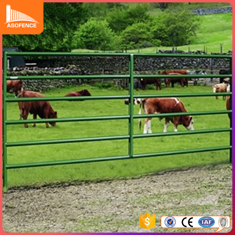 2.1m x 1.8m galvanized steel horse round yard panel