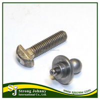 Taiwan Steel or Stainless Steel DIN 261 T head bolt T Bolt