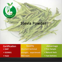 Natural Sweetner Stevia Powder Stevia Extract