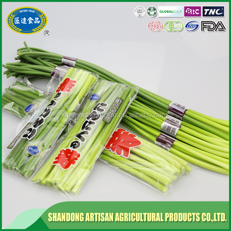 Most popular Chinese green garlic sprout with long - term service