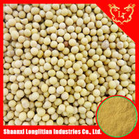 Hot Sale!!! Natural Organic Black Soya bean Extract For Health Care