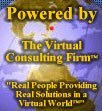Social Networking Consulting Services
