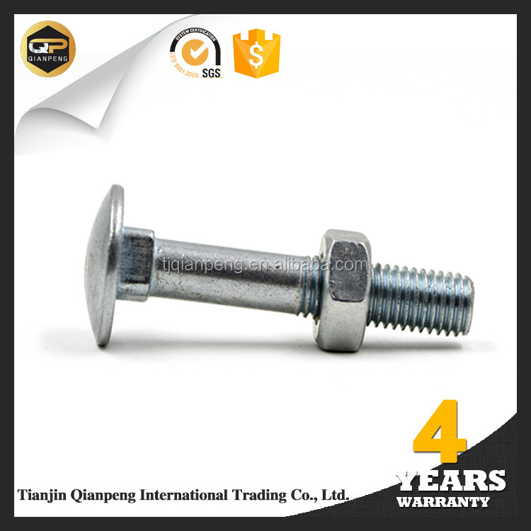 high strength bolt importers / carriage bolts and nuts factories