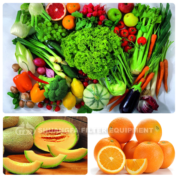 Soup juicers for recipes