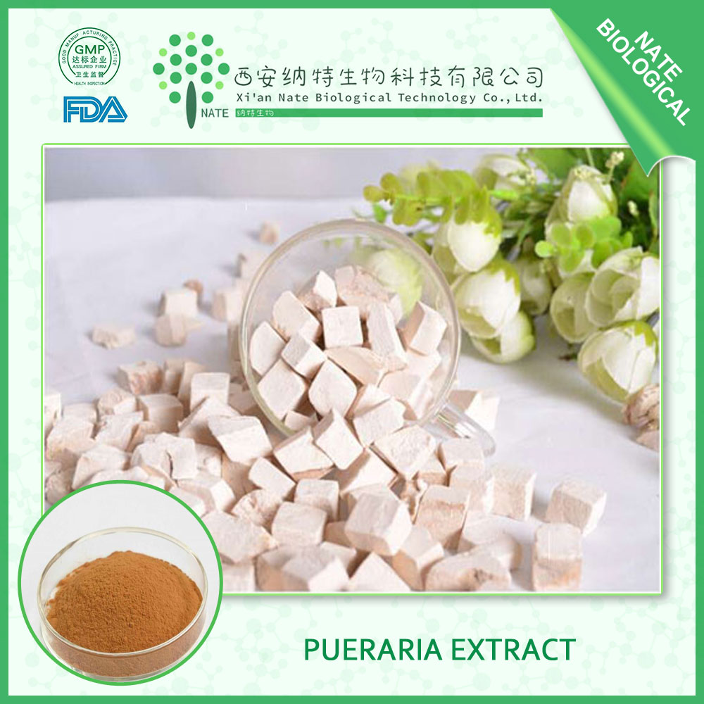 Boost immunity of Pueraria extract with 30% Flavone Puerarin FREE sample