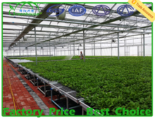MYXL Low cost&High quality PC sheet plant nursery greenhouse