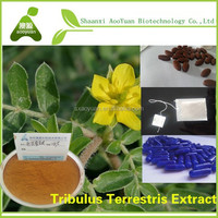 The lowest price for top grade fructus tribulus terrestris P.E. Saponins 40%, 50%, 70%, 90%,