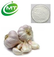 Good quality hot sales 5%Allicin Allium sativum L Garlic Extract