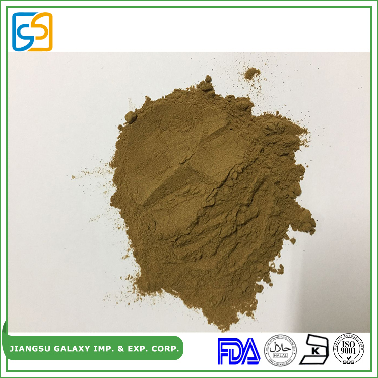 Hottest wholesale herbal high quality extracts of ginkgo biloba
