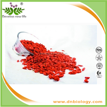 plant extract powder chinese wolfberry extract/Polysaccharide,Pharmaceuticals, healthcares, and cosmetics