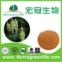 Yucca Extract,Yucca Schidigera Extract Powder,Yucca Root Extract