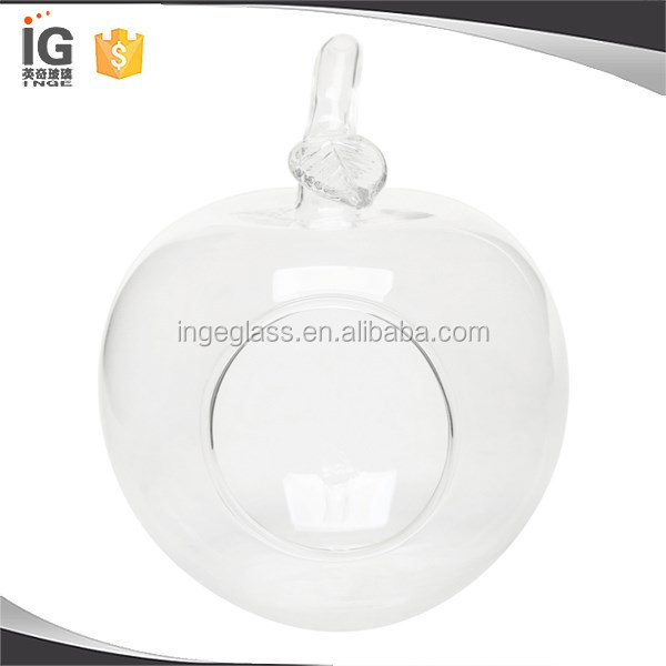 Apple Shaped Flower Plant Grass Hanging Clear Glass Vase