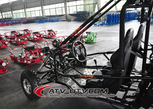 Ault 2 Seater Go Karts 250CC Gas Power Go Kart