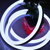 Led decoracion waterproof lights mini led neon flex