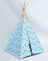 children play teepee tent/TP