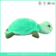 ISO9001 aduited sea animal custom no minimum green big eyes turtle plush toy