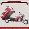 China motor cheap cheap cargo tricycle for 2 adults tricycle for sale