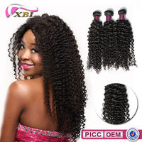 The Good The Virgin Brazilian Kingky Curly Hair Weave Black Star Hair Hair Wholesale Distributors
