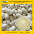 GMP Manufacturer supply White Kidney Bean Extract