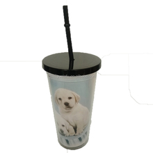 Insulated double wall plastic vacuum coffee tumbler cups with straw
