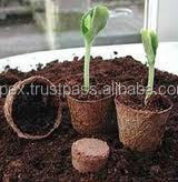 Coconut coir cups for seed growing