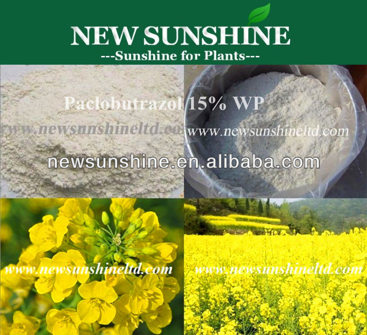 Paclobutrazol 95% TC 25% SC 30% 15% SP for Plant Growth Regulator