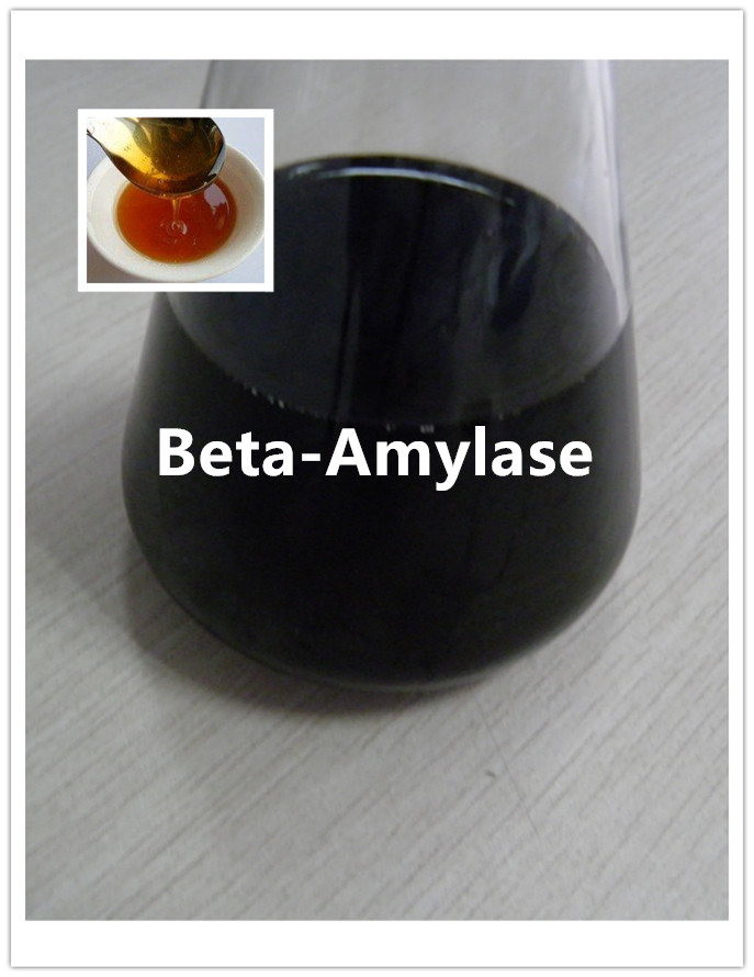 Excellent Beta Amylase Enzyme