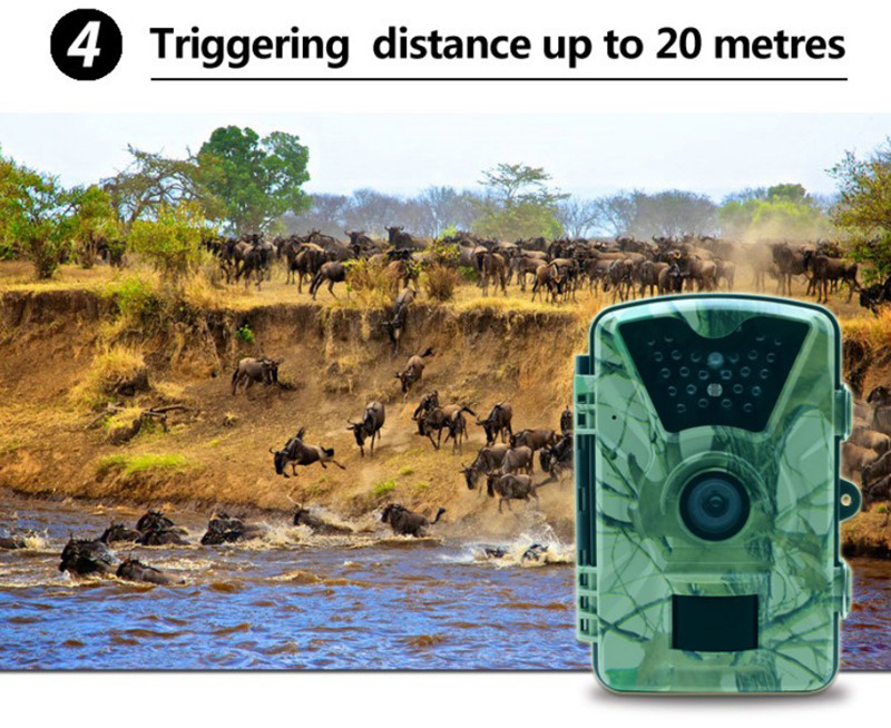 Hunting camera TC003 15.jpg
