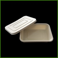 Wholesale disposable food packing kitchen tray