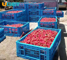 High quality plastic vegetable crates, folding plastic tomato crate, plastic fruit crates for sale