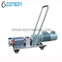 food grade stainless steel sanitary Positive displacement pump