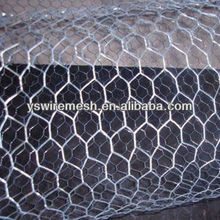 chicken wire mesh/hexagonal mesh/galvanized hexagonal mesh