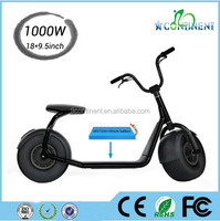 Fat Tire Off Road Stand Up 2 Wheel Electric Scooter Electric Motorcycle For Sale