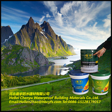 Heat resistant polyurethane rubber paint coating/pentens