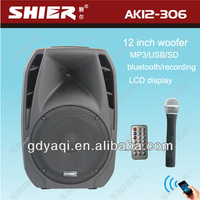professional protable wireless stage audio speaker with MP3/USB/SD/Bluetooth/Microphone/Battery