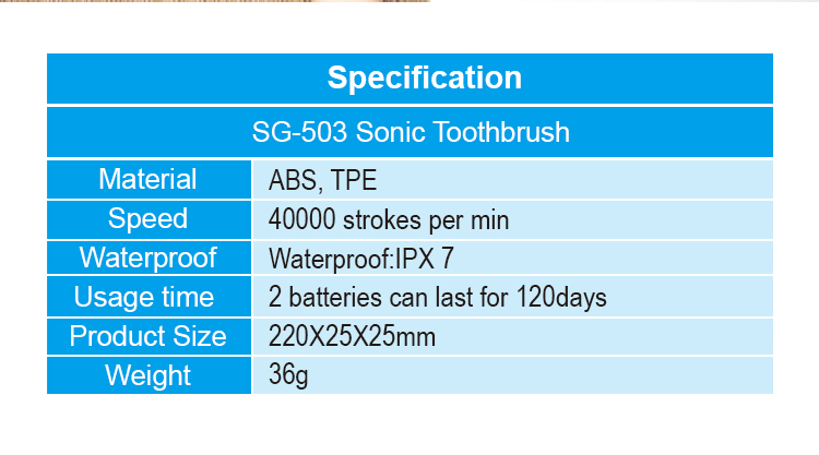 IPX7 waterproof 40000strokes high vibration sonic Electric Electronic toothbrush with cheap price SG503