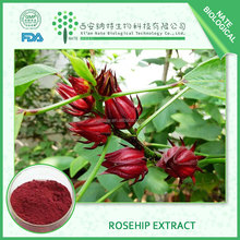 Natural skin care raw material Rosehip extract 25% anthocyanidins
