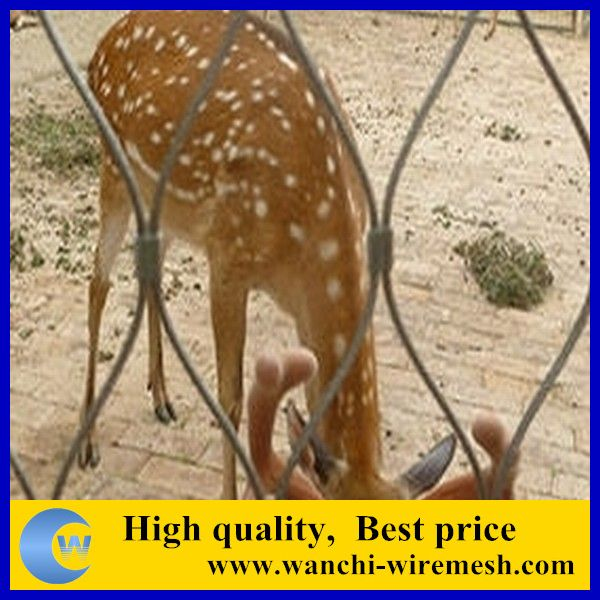 High quality decorative steel wire rope mesh for zoo fence(Manufacture)