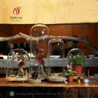 Ballerina Clear Glass Bell Jars with Wooden Base Glass Dome