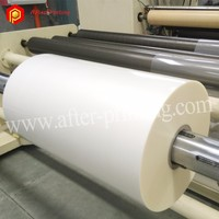 Environment Friendly Density BOPP Film