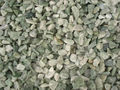 Light Green crushed washed gravels