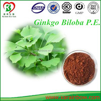 Herbal Extract Ginkgo Biloba Extract Powder